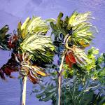 """Palms in the Wind"" by mazz"