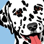 """Dalmatian"" by waterart"