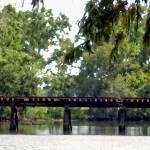 """Bayou Railroad Track"" by mqmysticenterprise"