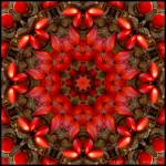 """Red Kaleidoscope #1"" by lyle58"
