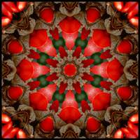 Red Kaleidoscope #2