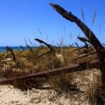 """""""Barril Beach, Tavira, Portugal"""" by sebastianchilla"""