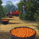 """Orange Harvest"" by RobertWince"