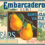 """Embarcadero Pears Fruit Crate Label"" by lifeoverhere"