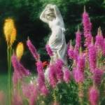 """spring faeire"" by JackofArts"