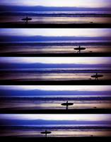 rows_of_surfers