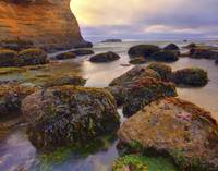 232_HangingOn_OregonCoast_OR