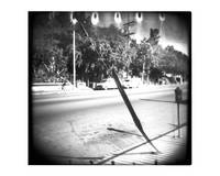 Untitled Holga 1