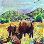 """Buffalo near Fort Sill"" by CatherineDWright"