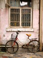 Still Life w/ Bicycle