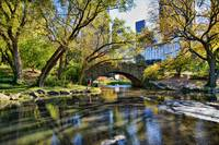 Gapstow Bridge and Autumn within Central Park, NYC