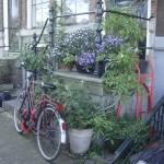 """""""Amsterdam"""" by kasiahein"""