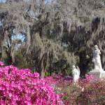 """""""Savannah, GA"""" by kasiahein"""