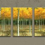 """Aspen Grove Study 01"" by JHThomas"