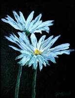 daisy flowers delicate oil painting