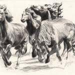 """Mustangs of Las Colinas"" by DBCArtwork"