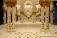 Sheikh zayed Mosque Pillars