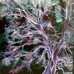 """""""spooky tree"""" by sueg355"""
