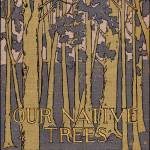 """Our Native Trees, 1908 book cover"" by arcaniumantiques"
