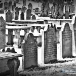 """Old Cemetery in Halifax"" by norablansett"