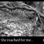 """She Reached For Me..."" by norablansett"