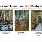 """derbyshire drawings"" by sueg355"
