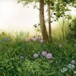 """Green fantasy"" by akimas"