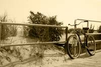 The Beach Bike