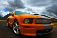 Ford Orange Shelby Mustang GT Series