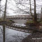"""Bridge to.....?"" by AWatchfulWanderer"