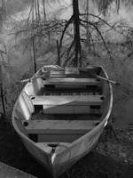 Rowboat & Tree