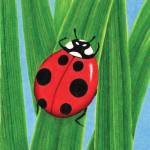 """The Happy Ladybug"" by SamanthasArtStudio"
