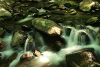 Stream in Smoky Mountains