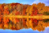 Autumn Reflections