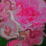 """Fairy Rose Abstract"" by BarlondSmith"