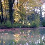 """""""reflets sur le canal  / reflections on the canal"""" by geronimo"""