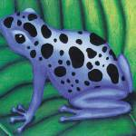 """Blue Poison Dart Frog"" by SamanthasArtStudio"