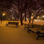 """Empty Benches"" by WaynePhotoGuy"