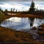 """""""Small pond near Solobua september 09"""" by Odd"""