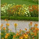 """""""Flores en los Jardines de Luxemburgo"""" by Basilea"""