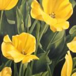 """Tulips Yellow"" by MaryThomas"