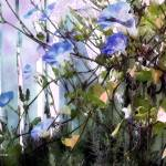 """Morning Glories Pocket Garden"" by artistfaye"