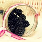 """""""berries"""" by ReneeWatersPhotography"""