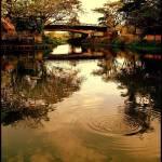"""The silent bridge"" by robinngeorge"