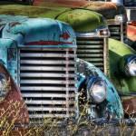 """""""Reawakening"""" by BCImages"""