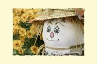 Scarecrow with Mums (Decorative Border)