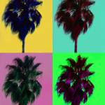 """Pop Palms"" by lavenderphotography"
