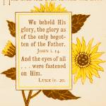 """First Evening, from 1890 book Bible Sunflowers"" by arcaniumantiques"
