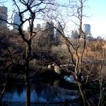 """Christmas Day In Central Park, New York"" by danpatrick"