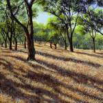 """Canyon Oaks"" by RobertWince"